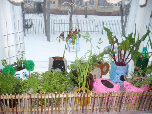 Зимний огород на подоконнике